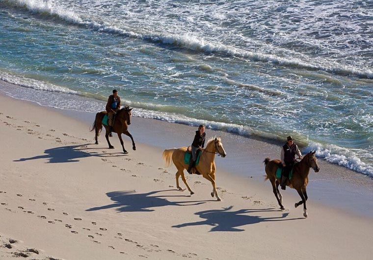 southafrica-hermanus-honeymoon-beach-bush-grootbos-horseriding